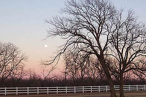 Taken at 5:31 p.m. CST, Dec. 25, 2004 in Wichita Falls, Texas. Click for larger image