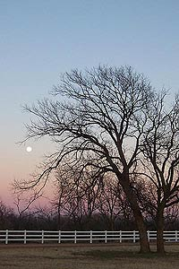 Taken at 5:32 p.m. CST, Dec. 25, 2004 in Wichita Falls, Texas. Click for larger image