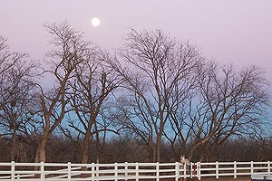 Taken at 5:42 p.m. CST, Dec. 25, 2004 in Wichita Falls, Texas. Click for larger image