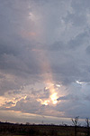Taken March 21, 2005 in Fort Worth. Click for larger image